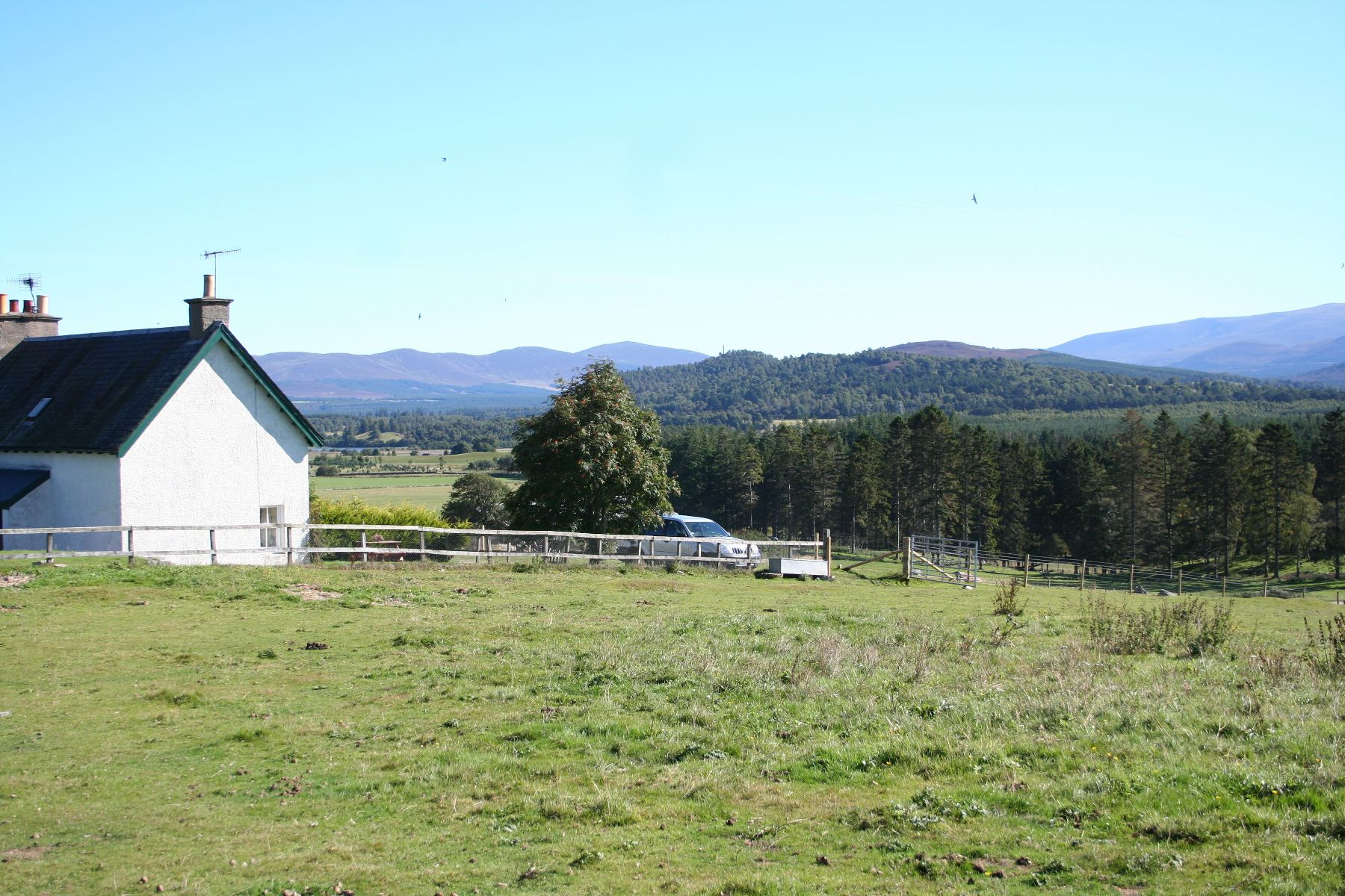Alvie Estate - View from Wester Delfour